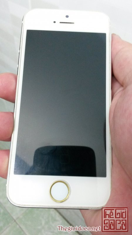 iphone 5 trang 64gb (2).jpg