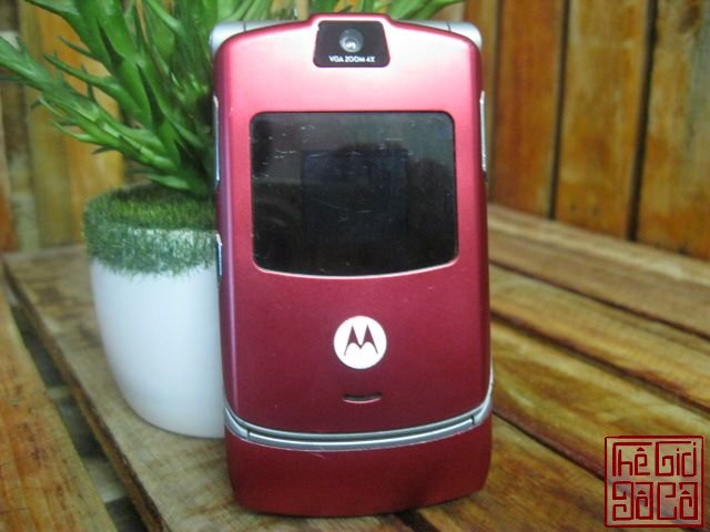 Motorola-Do-Man-1297_10.JPG