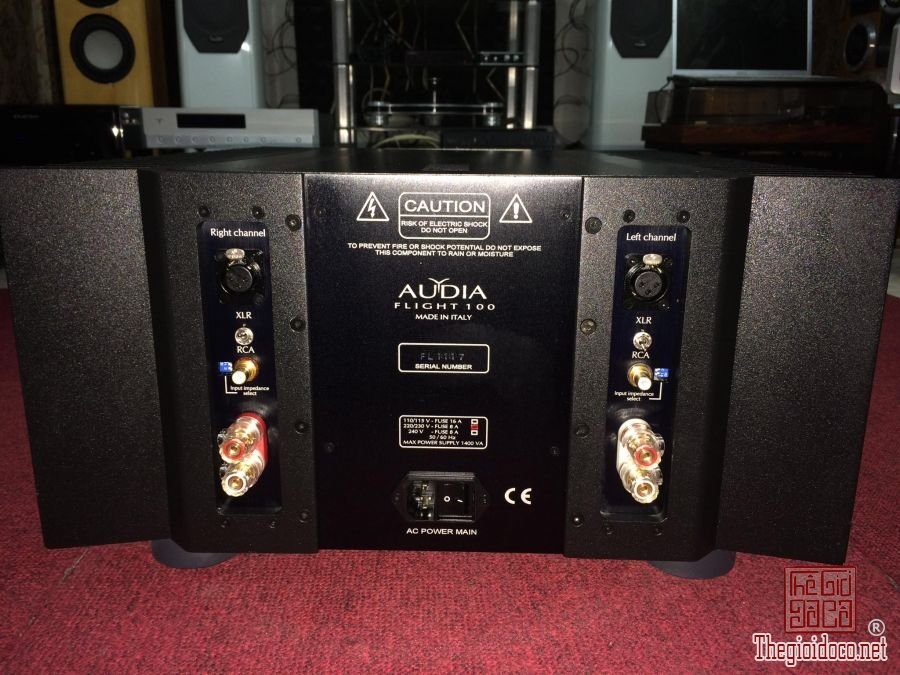 Power amplifier Audia Flight FL-100 mk4 (2).jpg