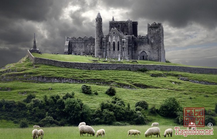 The Rock of Cashel, Ireland.jpg