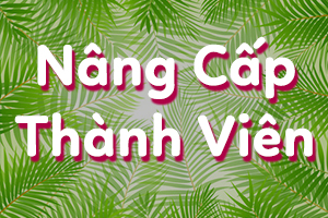 nâng cấp thành viên